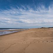 Beach at Parker River National Wildlife Refuge, Newbury, MA USA. Cape Ann on the horizon.