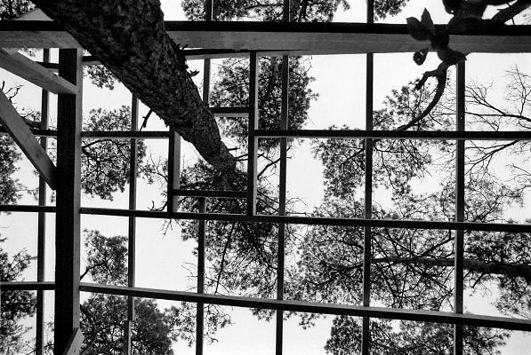 Nederland, IJsselstein, 15-10-1988De nederlandse bossen worden bedreigd door verzuring, zure regen . De Radboud universiteit maakt een onderzoekzopstelling om het effect ervan te meten en  in kaart te brengen . Een deel van de grond wordt overkapt zodat daar geen neerslag, regen, hemelwater op valt.Foto: Flip Franssen