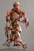 """The Runner,"" a piece from Gunther von Hagens' Body Worlds exhibits. Body Worlds is a traveling exhibit of real, plastinated human bodies and body parts. Von Hagens invented plastination as a way to preserve body tissue and is the creator of the Body Worlds exhibits.."