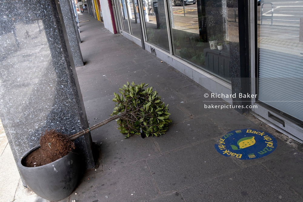 A potted shrub lies across the pavement after  windy weather during the third lockdown of the Coronavirus pandemic, on 11th March 2021, in London, England.