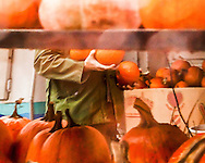 """Among an abundance of pumpkins, watching someone in a comfortable khaki-green jacket and and armful of pumpkins makes for a feel-good moment on a rainy October day. <br /> A painterly effect applied in post processing adds texture and enhances the dreamy, liquid atmosphere. <br /> <br /> For IMAGE LICENSING just click on the """"add to cart"""" button above.<br /> <br /> Fine Art archival paper prints for this image as well as canvas, metal and acrylic prints available here:<br /> https://2-julie-weber.pixels.com/featured/autumn-plenty-julie-weber.html"""