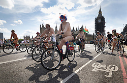 © Licensed to London News Pictures. 14/08/2021. London, UK. Naked cyclists cross Westminster Bridge as they take part in the World Naked Bike Ride in central London. Activists are protesting against the global dependency on oil and are calling for an end to the car culture. Photo credit: Peter Macdiarmid/LNP