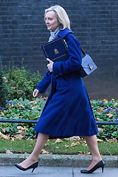 Downing Street, London, November 29th 2016. Justice Secretary and Lord Chancellor Liz Truss arrives at 10 Downing Street for the weekly meeting of the UK cabinet.