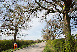 Quainton, UK. 26th April, 2021. HS2 security guards monitor Stop HS2 activists occupying a mature oak tree on the opposite side of the road in order to try to prevent it and two other oak trees from being felled to construct a temporary access road for the HS2 high-speed rail link. Environmental activists continue to oppose the controversial HS2 infrastructure project from a series of protection camps along its Phase 1 route between London and Birmingham.