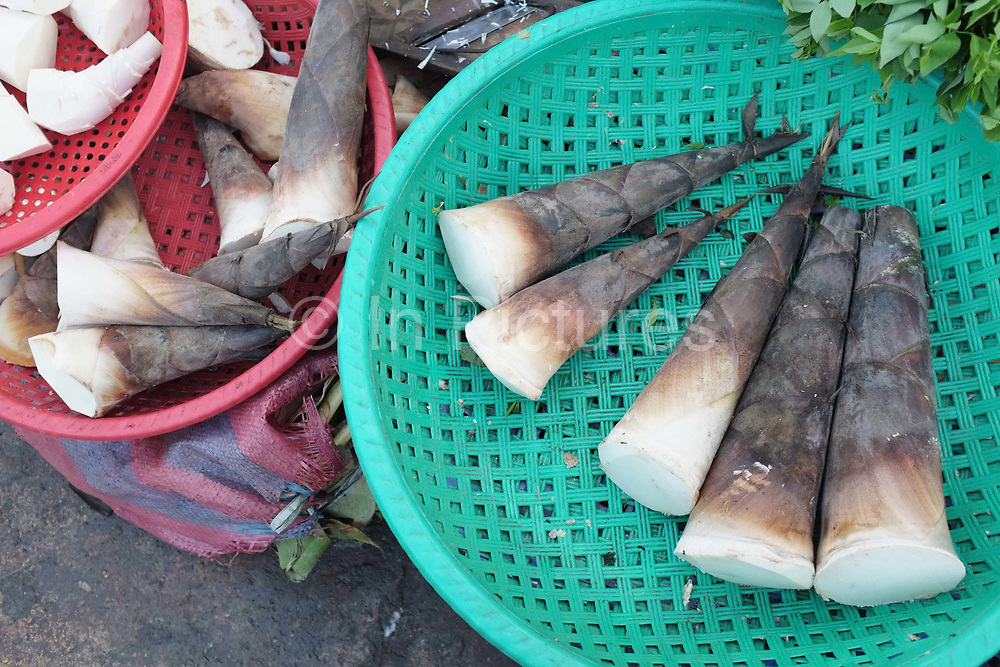 Bamboo shoots for sale at Daeum Kor morning market in Phnom Penh, the capital city of Cambodia. A large variety of local products are available for sale in fresh markets all over Cambodia, all being sold on small individual stalls.