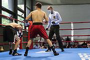 BOXEN: Hamburg Giants Professional Boxing, Hamburg. 01.08.2020<br /> Andranik  Voskanjan - Melvin Kecanovic<br /> © Torsten Helmke