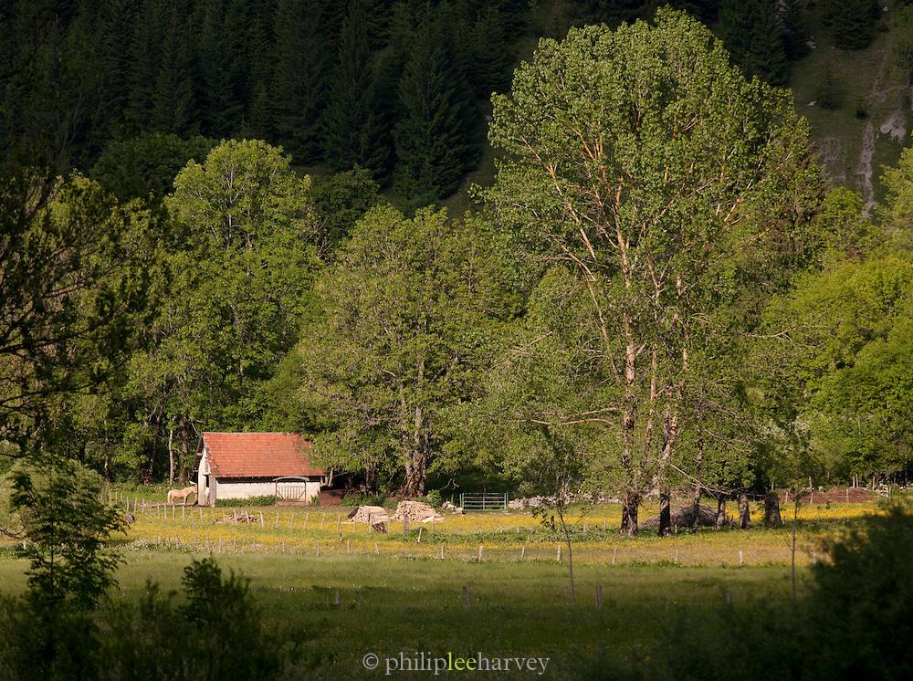 A farm in La Cluse-et-Mijoux in the Jura region of France