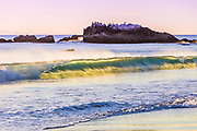 Bird Rock Off The Coast OF Laguna Beach California