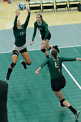 26 August 2017:  Kira Jackson, Anne Cummings & Maisy Bowden during the green-white scrimmage of the Illinois Wesleyan Titans in Shirk Center, Bloomington IL