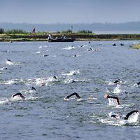 Nederland.Almere Haven.27 augustus 2005.<br /> Het eerste onderdeel van de Holland Triathlon, 4 km zwemmen in het IJsselmeer richting het haventje van Almere Haven.<br /> Op de foto arriveren de eerste deelnemers.<br /> Sport.Zwemmen.Conditie.Doorzettingsvermogen.Open water.Sportief.<br /> Participants in the Holland Triathlon 2005.