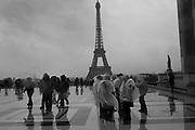 Les Halles Paris . 9 November 2018