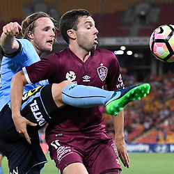 BRISBANE, AUSTRALIA - NOVEMBER 19: Rhyan Grant of Sydney and Tommy Oar of the Roar compete for the ball during the round 7 Hyundai A-League match between the Brisbane Roar and Sydney FC at Suncorp Stadium on November 19, 2016 in Brisbane, Australia. (Photo by Patrick Kearney/Brisbane Roar)