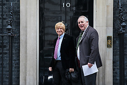 © Licensed to London News Pictures. 29/11/2017. London, UK. Michael Fabricant MP (L) on Downing Street for an undisclosed meeting said to be about 'ideas and strategy'. Photo credit: Rob Pinney/LNP