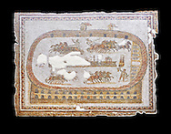 Late 2nd early 3rd century AD Roman mosaic depictiong a  chariot race at the circus. From Cathage, Tunisia.  The Bardo Museum, Tunis, Tunisia. black background .<br /> <br /> If you prefer to buy from our ALAMY PHOTO LIBRARY  Collection visit : https://www.alamy.com/portfolio/paul-williams-funkystock/roman-mosaic.html - Type -   Bardo    - into the LOWER SEARCH WITHIN GALLERY box. Refine search by adding background colour, place, museum etc<br /> <br /> Visit our ROMAN MOSAIC PHOTO COLLECTIONS for more photos to download  as wall art prints https://funkystock.photoshelter.com/gallery-collection/Roman-Mosaics-Art-Pictures-Images/C0000LcfNel7FpLI