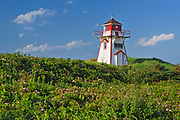 Lighthouse and roses (Rosa sp.) on sand dunes<br />