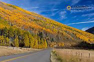 Castle Creek Road in autumn near Aspen, Colorado, USA
