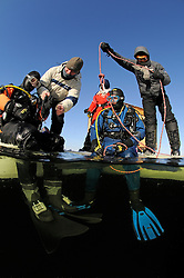 ice diving, ice diver with safty rope and rescue diver, scuba diver under ice, splitlevel picture, Russia, White Sea, MR