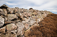 Old drystone wall and brown heather in north-east Caithness, Scotland