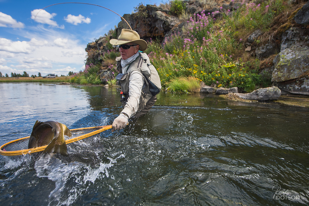 Landing his best rainbow trout of the year,  Bruce Raskin tries to get the big dog netted. He did!