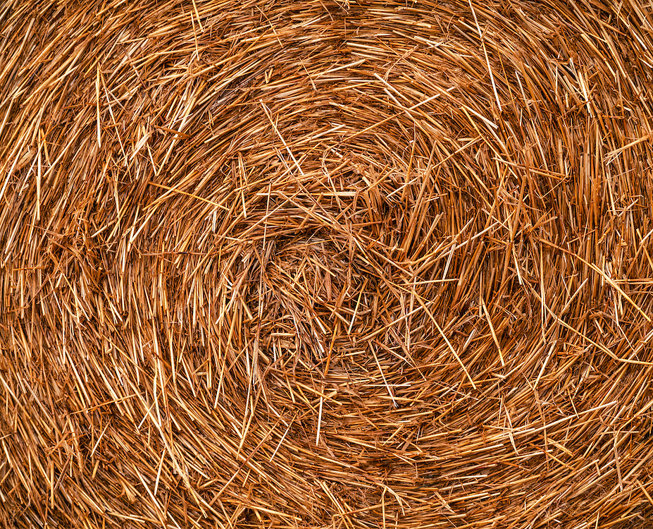 Detail of a large rolled straw bale in New Zealand. Licensing and Open Edition Prints