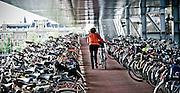 Bike parking lot, outside of Amsterdam Centraal Station.