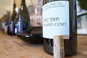 decanter and wine bottle Vinas del Cenit VDC 2005 Bodegas Vinas del Cenit, DO Tierra del Vin de Zamora spain castile and leon