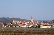 vineyard village meursault cote de beaune burgundy france