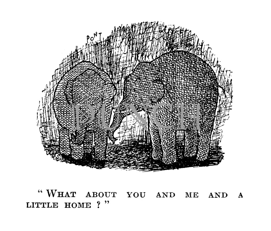 """ What about you and me and a little home?"""