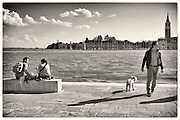 Man and couple with their dogs