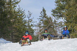Friends sledding on winter landscape