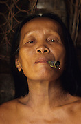 NOMADIC PENAN, MALAYSIA. Sarawak, Borneo, South East Asia. Smoking cigarette. Tropical rainforest and one of the world's richest, oldest eco-systems, flora and fauna, under threat from development, logging and deforestation. Home to indigenous Dayak native tribal peoples, farming by slash and burn cultivation, fishing and hunting wild boar. Home to the Penan, traditional nomadic hunter-gatherers, of whom only one thousand survive, eating roots, and hunting wild animals with blowpipes. Animists, Christians, they still practice traditional medicine from herbs and plants. Native people have mounted protests and blockades against logging concessions, many have been arrested and imprisoned.