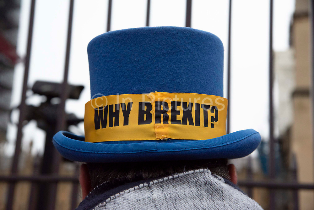 A close up of pro remain campaigner Steve Brays hat. The day before Brexit Day, pro remain supporters from campaign group Sodem, gather for a party to celebrate being part of the European Union, outside the Houses of Parliament in Parliament Square, Westminster, on 30th January 2020, in London, England, United Kingdom. The United Kingdom will leave the European Union formally at 23:00 GMT on 31st January, 2020.