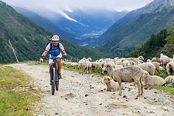 13-09-2017 FRA: BvdGF Tour du Mont Blanc day 4, Trient<br /> Van Chamonix naar Trient. <br /> Bergen, wolken, landschap, sneeuw, natuur, schapen, Elias