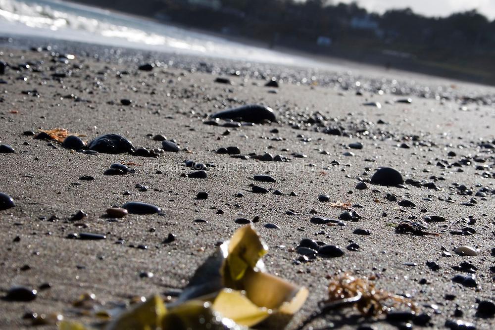 Close up of stones and seaweed on Killiney Beach in Dublin Ireland