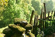 La sierra del Caurel (serra do Courel) en el Sur Este de Lugo, Galicia.<br /> <br /> The Caurel Mountain in the South East of Lugo, Galicia.