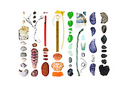 Dog Whelks (Nucella lapillus), granite and other beach stones, Waved whelk (Buccinum undatum), Moon Snail (Lunatia heros) , Common Periwinkles (Littorina littorea), Knotted Wrack (Ascophyllum nodosum), Lobster tail (Homarus americanus), balloon tail, lobster trap tag, sea glass, sea brick, lobster-claw bands, plastic-coated wires, mysterious thing that might be computer-innards, fishing-industry tag, European Green Crab shells (Carcinus maenas), plastic tail-light fragment, fragment of styrofoam cup, unidentified styrofoam bit, plastic shotgun wadding, Blue Mussel (Mytilus edulis), wire, aluminum soda can top, weird chunk of heavy rubbery material.