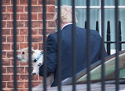 © Licensed to London News Pictures. 16/12/2019. London, UK. Prime Minister Boris Johnson arrives at the back of Downing Street carrying his dog Dilyn. Parliament will sit tomorrow with newly elected MPs taking their seats ahead of the State Opening of Parliament on Thursday. Photo credit: Peter Macdiarmid/LNP