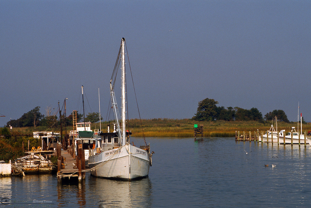 Tilghman Island, Maryland --Fishing boats take harbor at Knapps Narrows, along the Chesapeake Bay. The Bay,the largest estuary in the United States was once known for its great seafood production. Though it still yields more fish and shellfish (about 45,000 short tons) than any other estuary in the United States, the body of water is less productive than it used to be. Runoff from urban areas and farms, overharvesting, and invasion of foreign species have had an impact on the bay's health.