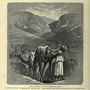 "AIN EL WEIBEH, ON THE BORDER OF EDOM, In the valley of El Jeib. The name signifies "" hole with water."" Many authorities regard this now deserted place as the site of Kadesh Barnea. Wood engraving of from 'Picturesque Palestine, Sinai and Egypt' by Wilson, Charles William, Sir, 1836-1905; Lane-Poole, Stanley, 1854-1931 Volume 3. Published in by J. S. Virtue and Co 1883"
