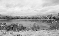 Infrared at Saltmarsh Pond.  ©2015 Karen Bobotas Photographer