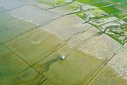 Nederland, Groningen, Gemeente De Marne, 05-08-2014; Pieterburenwad met kwelders en landaanwinning, grenzend aan de Noordpolder.<br /> Salt marshes and land reclamation, next to the Noordpolder.<br /> <br /> luchtfoto (toeslag op standard tarieven);<br /> aerial photo (additional fee required);<br /> copyright foto/photo Siebe Swart