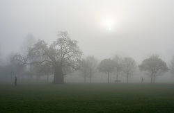 © Licensed to London News Pictures. 01/04/2014. Hammersmith, UK. Trees are shrouded in heavy fog.  A foggy morning in Ravenscourt Park in Hammersmith West London today April 1st 2014. Photo credit : Stephen Simpson/LNP