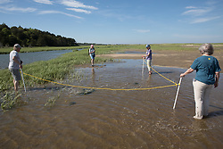Bob, Diane, Mary & Judith  On Horseshoe Crab Survey