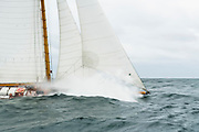Brilliant sailing in the Opera House Cup.