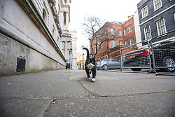 © Licensed to London News Pictures. 05/12/2016. London, UK. Palmerston, the Foreign Office cat, shows off his brand new collar which reads 'LORD P'. Photo credit: Rob Pinney/LNP