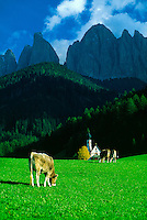 Alpine scene in the Dolomites, St. Magdalena (Sudtirol region), Northern Italy