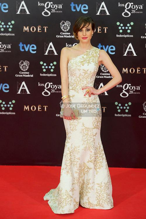 Natalia de Molina attends Goya Cinema Awards 2014 at Centro de Congresos Principe Felipe on February 9, 2014 in Madrid, Spain