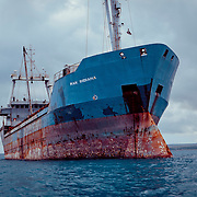 Rusted and full of barnacles this ship looks like it has not moved in years- this is off the shore of Zanzibar.