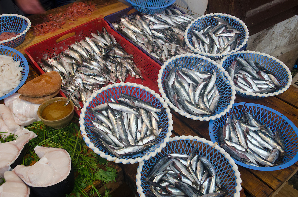 Fishmonger in Fes el Bali, Morocco