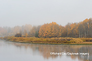 67545-09401 Fall color and fog along the Snake River near Oxbow Bend,  Grand Teton National Park, WY